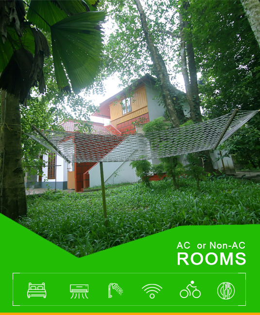accommodation in alleppey